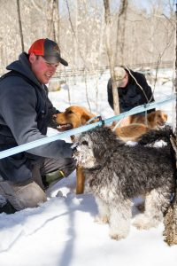 Cody Purinton and the dogs checking sap lines